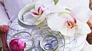 Fleur de sel Reims : créations florales